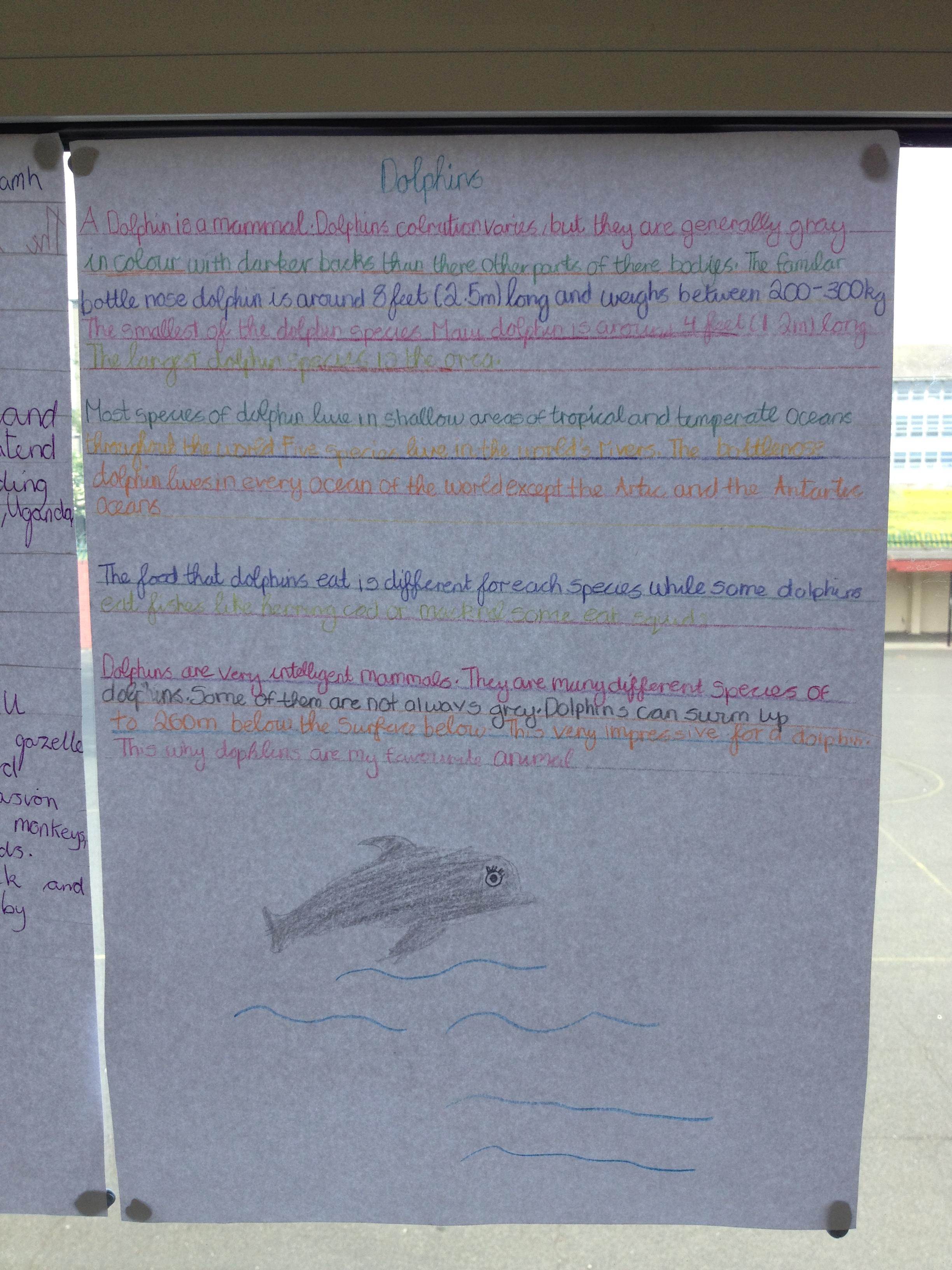 report writing on school trip